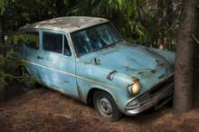 Vintage Car Crash A Tree In Th...
