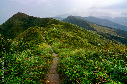Poster Heuvel Peaceful path through green coastal hills and grasslands on the Caoling Historic Trail in Taiwan