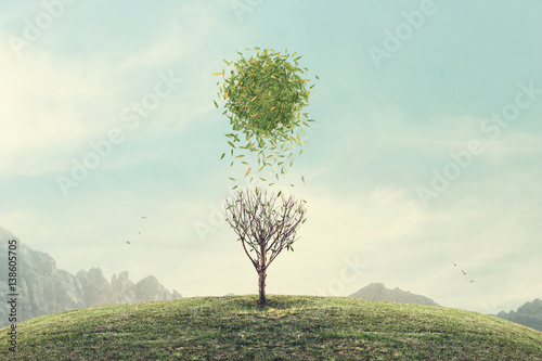 Obraz surreal conceptual spring sun  - fototapety do salonu
