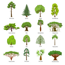 Flat Green Garden Forest Icons...