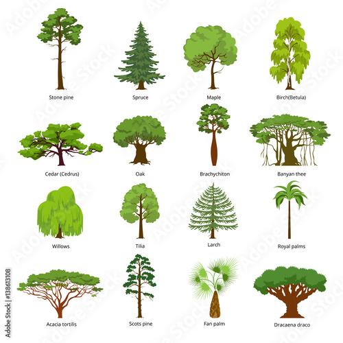 Fotografía Flat green garden forest icons trees vector. Nature concept.