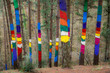 painted forest of oma at basque country, Spain