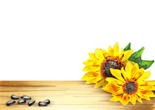 Sunflower Template For Your Pr...