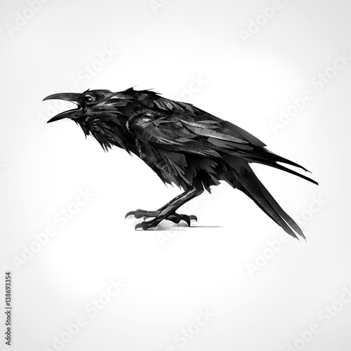 painted black raven sitting isolated Wall mural