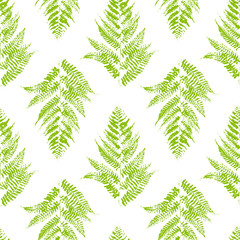 NaklejkaSeamless pattern with fern leaves