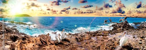 Photo sur Toile Bleu jean Paisaje de la isla de Tenerife. Océano y costa hermosa de la playa. Naturaleza y paisajes pintorescos en Canarias. Paisaje de aventuras y viajes. Atardecer y aves
