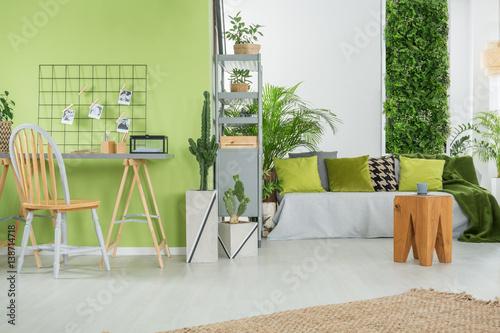 Fototapeta Green home interior with sofa obraz na płótnie