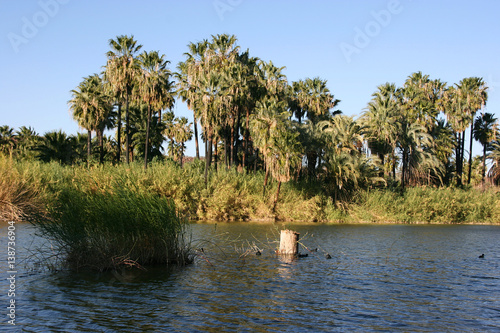 Fotografía  Laguna (lagoon) de San Ignacio, San Ignacio, Baja California Sur, Mexico