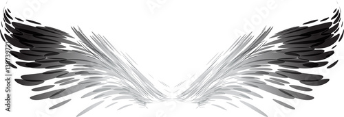 Fényképezés  Abstract black and white wings