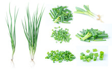 Chopped Spring Green Onion Iso...