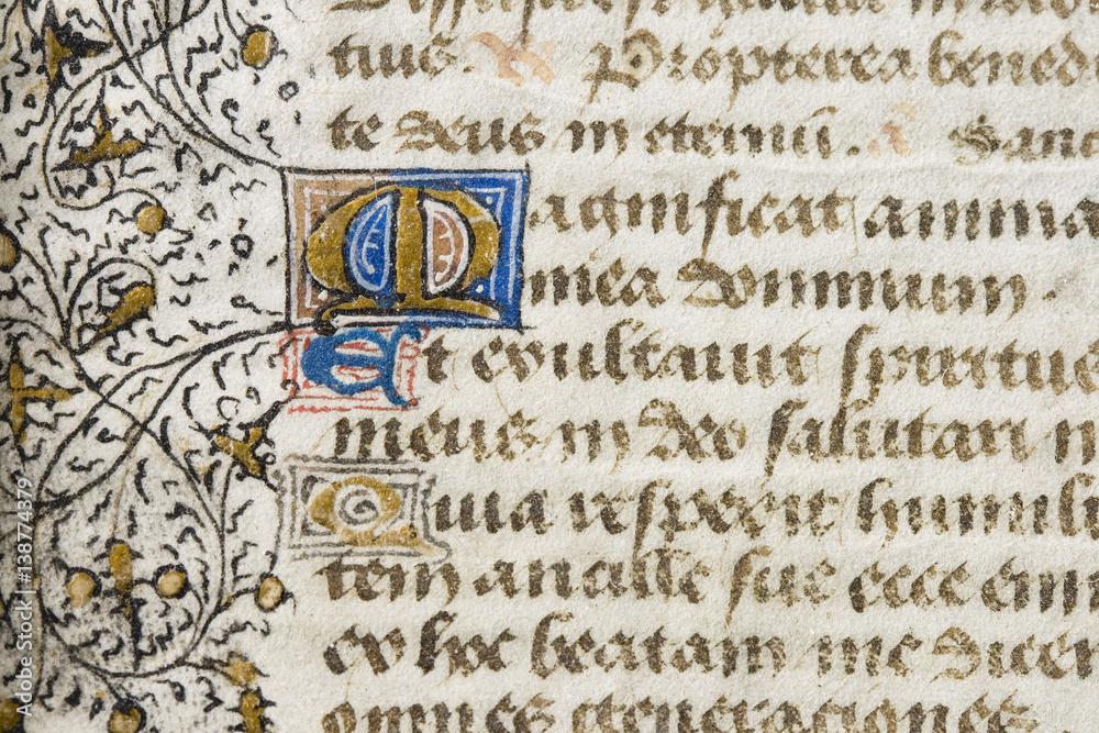 Fototapety, obrazy: illuminated manuscript detail