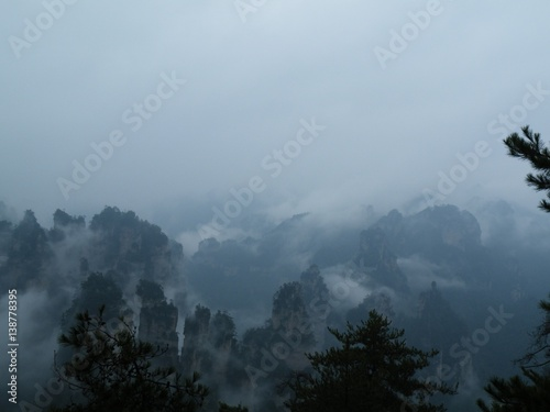 Aluminium Prints View over birch tree to deep valley full of heavy mist.