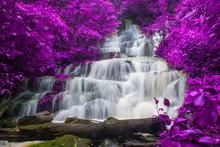 Beautiful Waterfall In Rainfor...