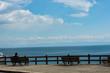 神戸市鉢伏山界隈・大阪港方面の眺望