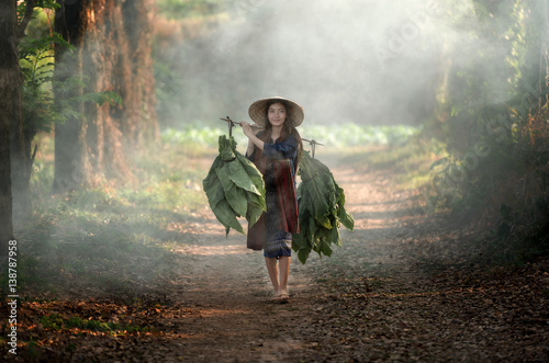 Girl with a tobacco farm in rural Asia. Canvas Print