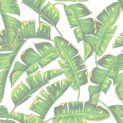 fototapeta jednolity wzór liści banana i palm