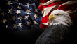 canvas print picture American Bald Eagle with Flag.