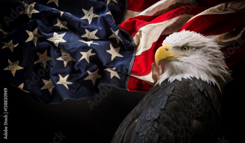 Spoed Foto op Canvas Eagle American Bald Eagle with Flag.
