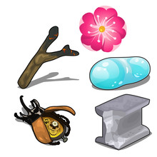 Electronic Beetle, Flower Magic, Unusual Items