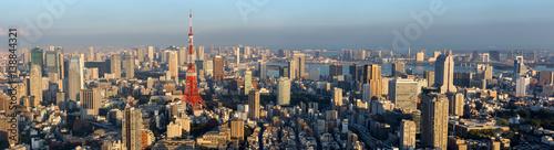 Plakat Panorama widok Tokio miasta linia horyzontu, Japonia