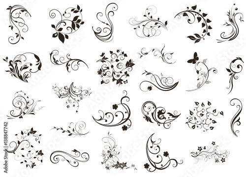 Obraz na płótnie Flourish design elements