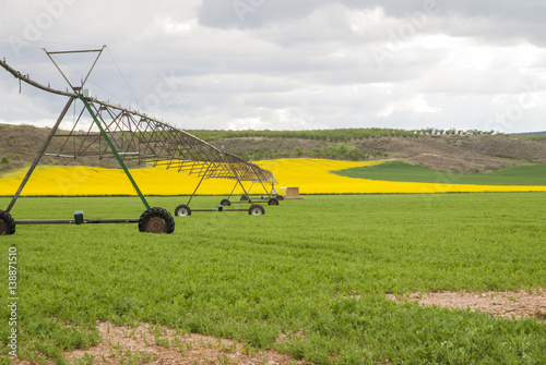 Meadow irrigated by lateral spray system on wheels Canvas Print
