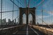 New Yorks Shots