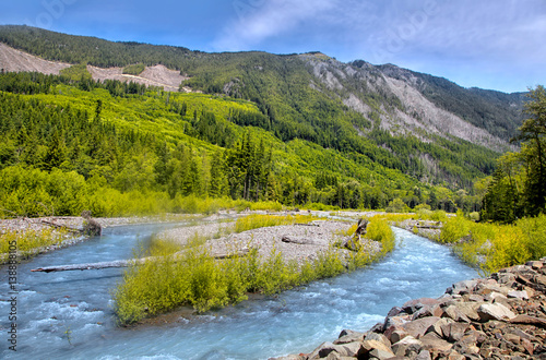 Aluminium Prints Forest river Whiter river landscape near Mount Rainier in Washington