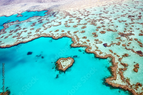 Aluminium Prints Coral reefs Heart Reef Whitsundays