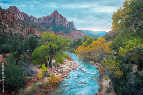 Small river it the Zion National Park, USA