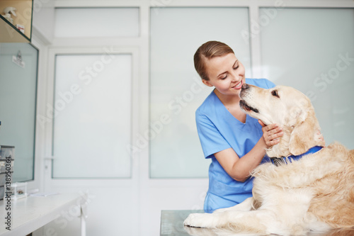 Photo  Young female veterinarian in blue uniform hugging and talking to white fluffy la