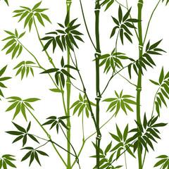 Fototapeta Bambus Bamboo Seamless Pattern