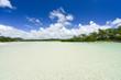 Mauritius - Ile aux Cerf