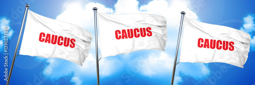 caucus, 3D rendering, triple flags Canvas-taulu