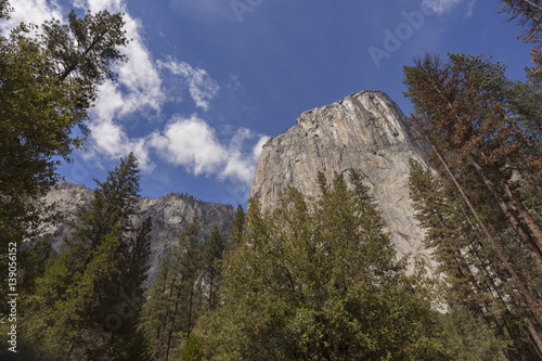 El Capitan - Looking high into the face of El Capitan in Yosemite Poster
