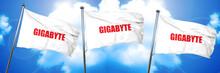 Gigabyte, 3D Rendering, Triple Flags