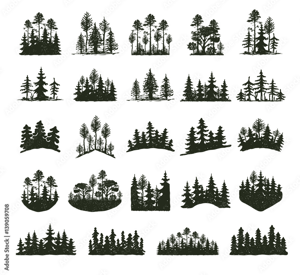 Fototapeta Tree outdoor travel black silhouette coniferous natural badges, tops pine spruce branch cedar and plant leaf abstract stem drawing vector illustration.