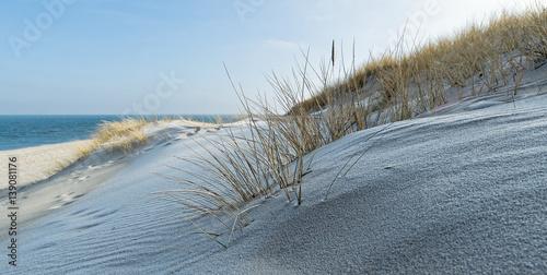 Tuinposter Noordzee Panorama Strandhafer auf Sanddüne am Ellenbogen auf Sylt