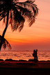 Twilight sunset with coconut tree at the beach.,background.