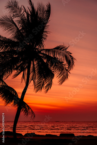 Twilight sunset with coconut tree at the beach ,background