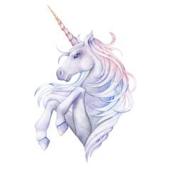 Cute watercolor unicorn