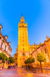 Santa Maria de la Sede Cathedral and Giralda tower in Sevilla, Andalusia, Spain