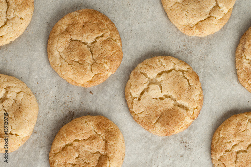 Snickerdoodle cookies Canvas-taulu