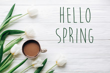 Hello Spring Text Sign On Tulips And Coffee On White Wooden Rustic Background. Stylish Flat Lay With Flowers And Drink With Space For Text. Greeting Card.  Happy Day Concept