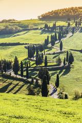 Fototapeta Toskania Tuscany landscape