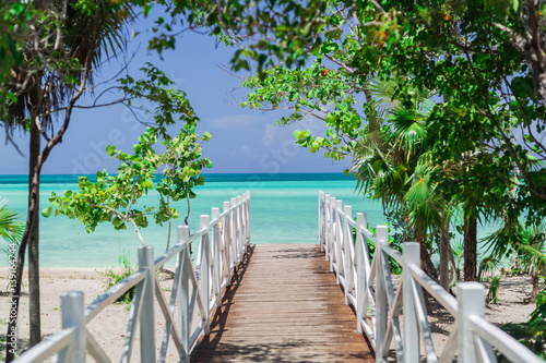 natural gorgeous amazing view of wooden bridge leading to the beach through tropical garden