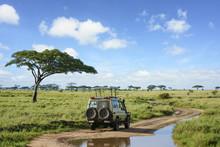 Safari Landscape In Serengeti ...