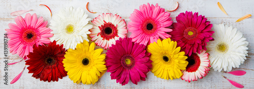 Aluminium Prints Gerbera Colorful gerbera flowers on white wooden background. Top view. Copy space