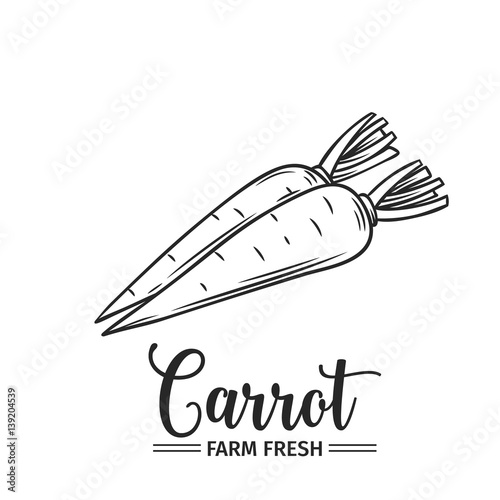Foto Hand drawn carrot icon.