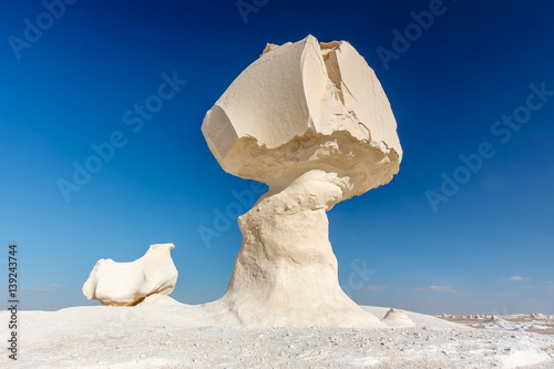 Poster de jardin Desert de sable Rock formations in the Egyptian White desert